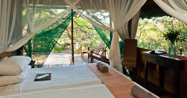 KOSI FOREST LODGE, ELEPHANT COAST